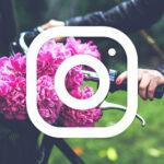 Frasi per Instagram
