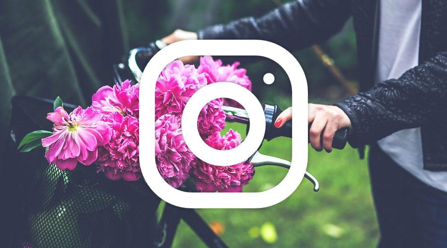 Dove trovare Frasi da utilizzare su Instagram per Foto e Storie